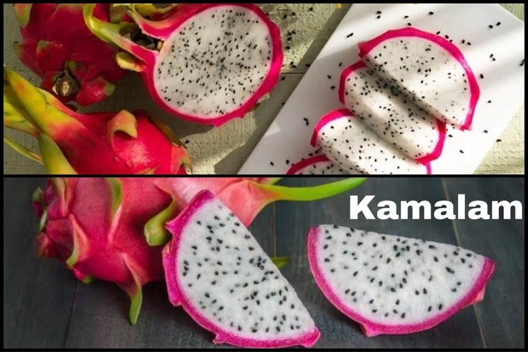 Dragon Fruit Kamalam